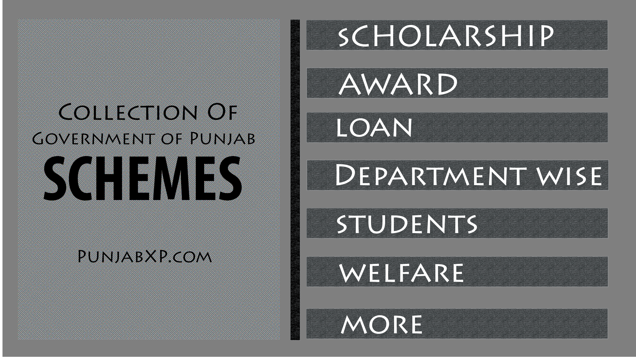 Schemes – Punjab Govt  Notification